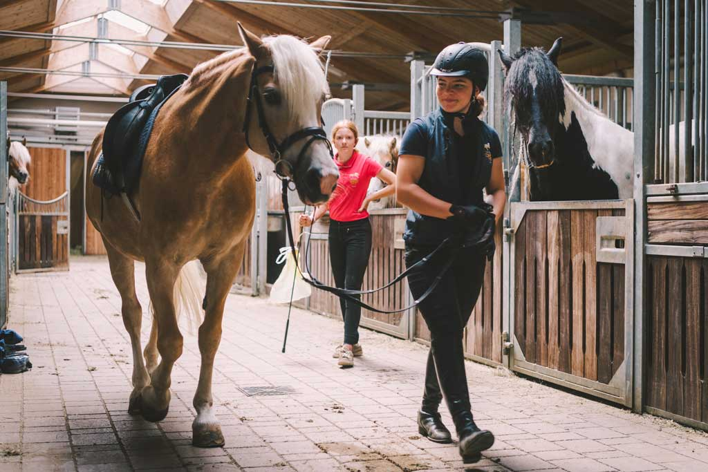 Riding Stables in Serfaus - Darrehof